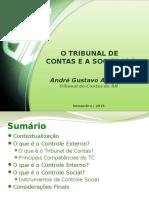 O Tribunal de Contas e a Sociedade