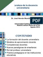 Competencias Docentes. Dr. Montúfar. UNICAH