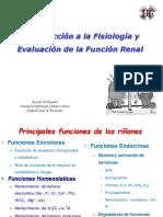 Fisiologia Renal.pdf