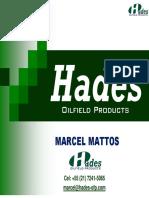 DNV Hades Apresentação - Completa.pdf