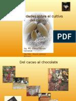 Generalidades Del Cacao