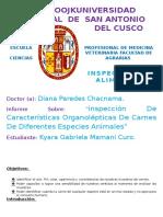Informe de Inpeccion de Carnes