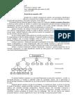 Conceptul şi conţinutul AEF