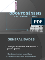 4-EMBRIOLOGIA-DENTARIA