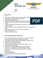 Programa PCA 2017