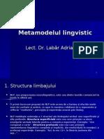 Metamodelul Lingvistic