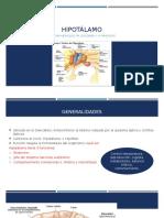 Monitoria hipotalamo.pptx