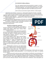 Functiile de Nutritie in Seria Animala