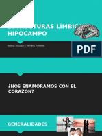 Monitoria hipocampo.pptx