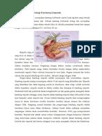 LP 2 6 PU Kolesistitis.docx