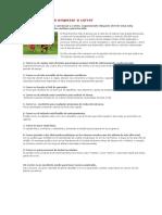 10_Razones_Para_Empezar_A_Correr.pdf