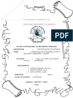 Avanse Contaminacion Atmosferica Por Industria Carbonera y Calera (1)
