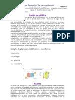 union peptidica
