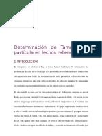 Determinación de Tamaño de Partícula en Lechos Rellenos