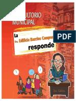 Como trabaja un Municipio.pdf