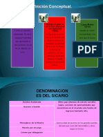 Diapositivas de Perfil Psicologico Sicario