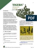 Paper_Tigers_Rules_v3.pdf