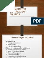 Cronometria Dentária Dos Equinos