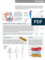 Material Didatico Maquel Sistema Linfatico