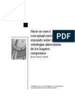 Dialnet-HaciaUnMarcoConceptualmetodologicoRenovadoSobreLas-2108279