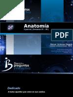 Anatomia - II Parcial Cpu