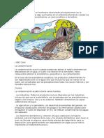 La Contaminación Es Un Fenómeno Relacionado Principalmente Con La Actividad Humana Que Deja Sus Huellas en El Ambiente Afectando a Todos Los Componentes de Los Ecosistemas
