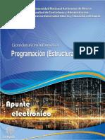 Apuntes - Estructura de Datos - Informatica - UNAM