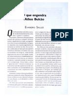 Evandro Salles - O Que Engendra Athos Bulcao