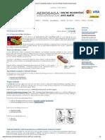 Ešerihija Koli Infekcije, Aerobna Bakterija, Piogene i Crevne Infekcije, Fekalna Kontaminacija