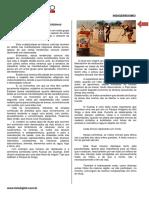 Aula 02 - Indigenismo - Prof. Janaina - Conteúdo