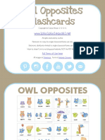 Owl Opposites Flashcards