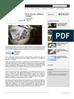 Huella de Mano enorme en Cueva.pdf