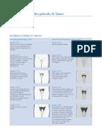 Estadios puberales de tanner.pdf
