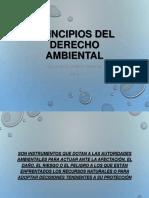 Principios Del Derecho Ambiental 2016
