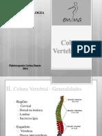 10o Aula Anatomofisiologia I