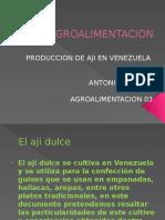 AGROALIMENTACION 1