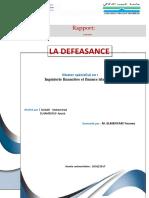 Rapport Final (Défaisance)
