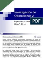 Investigaciu00F3n de Operaciones 2 - PLE