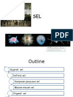 SEL ppt