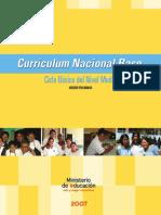 CNB CICLO BASICO.pdf