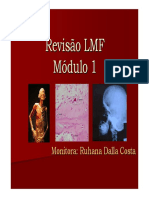 RevisaŞo LMF1