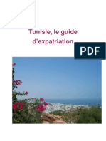 Aperçu de Tunisie, le guide d'expatriation