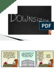 Downsizing Plans.pptx