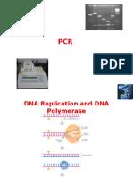 1-2 PCR and Gel Electrophoresis