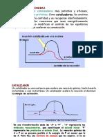 ENZIMAS Y METABOLISMO.ppt