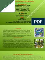 Biosfera y Biodiversidad Los Valores de La Biodiversidad y Actividades de Desarrollo Que Afectan Ala Biodiversidad