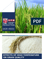 Effect of High Temperature on Grain Quality