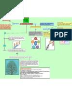 Transiciones de Desarrollo-mapa Conceptual
