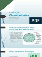 Ficología 2 cianobacterias