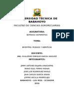 Briofitas Musgos y Hepaticas 2 Parcial 2 Exposicion Grupal-botanica Sistematica